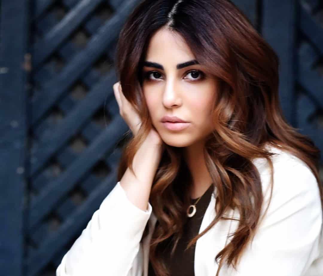 Ushna Shah New Photos